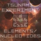 Tsunami Experiment - Elements / Nucleotides