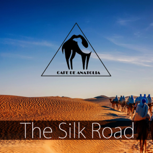 Various Artists - The Silk Road