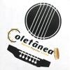 Coletânia: Música Popular Cristã