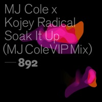 Soak It Up (Tengista rmx) - MJ COLE