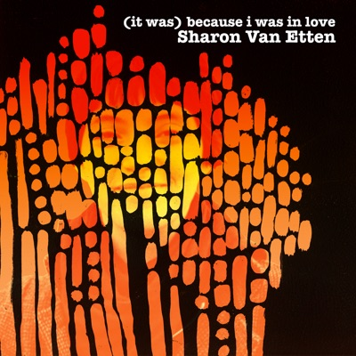 (It Was) Because I Was In Love - Sharon Van Etten