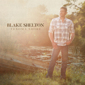 I Lived It-Blake Shelton