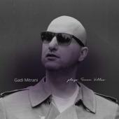 Gadi Mitrani Plays 7V