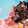 Deep Tone - Feelings of Love (feat. Mixusha) grafismos