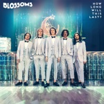 Blossoms - How Long Will This Last?