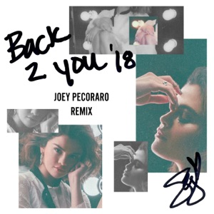 Back to You (Joey Pecoraro Remix) - Single Mp3 Download