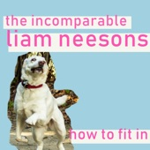The Incomparable Liam Neesons - I Hate Everyone
