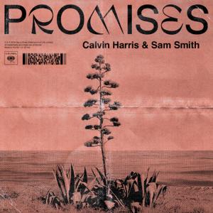 descargar bajar mp3 Promises Calvin Harris, Sam Smith