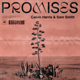 Calvin Harris, Sam Smith - Promises MP3
