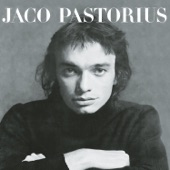 Jaco Pastorius - Portrait Of Tracy (Album Version)
