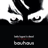 Bauhaus - Bela Lugosi Is Dead (The Hunger Mix)