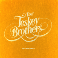 The Teskey Brothers - I Get Up