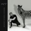 Mot - Когда исчезнет Слово artwork