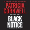 Black Notice AudioBook Download