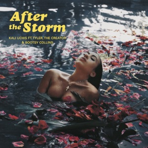 After The Storm (feat. Tyler, The Creator & Bootsy Collins) - Single Mp3 Download