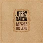 Black Mountain Boys/Jerry Garcia - Black Mountain Rag (Live)
