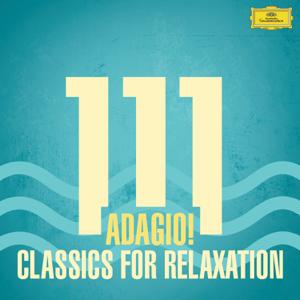 Verschillende artiesten - 111 Adagio! Classics For Relaxation