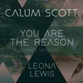 Calum Scott & Leona Lewis - You Are The Reason (Duet Version)