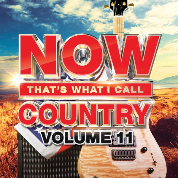 NOW That's What I Call Country, Vol. 11 album image
