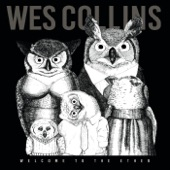 Wes Collins - Stethoscope