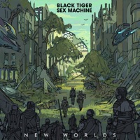 War (Michael White rmx) - BLACK TIGER SEX MACHINE