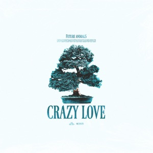 Future Animals - Crazy Love - Line Dance Music