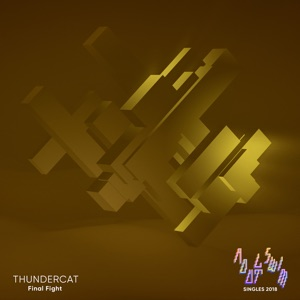 Thundercat - Final Fight