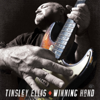 Tinsley Ellis - Don't Turn Off the Light artwork