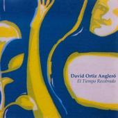El Tiempo Recobrado-David Ortiz Anglero
