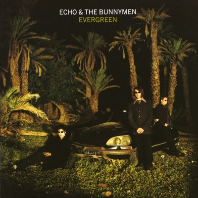 Evergreen (Expanded) - Echo & The Bunnymen