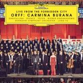"Carmina Burana: Blanziflor et Helena. 24. ""Ave formosissima"" (Live from the Forbidden City) artwork"