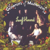 Leaf Hound - Sad Road to the Sea