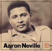 Aaron Neville - It Feels Like Rain