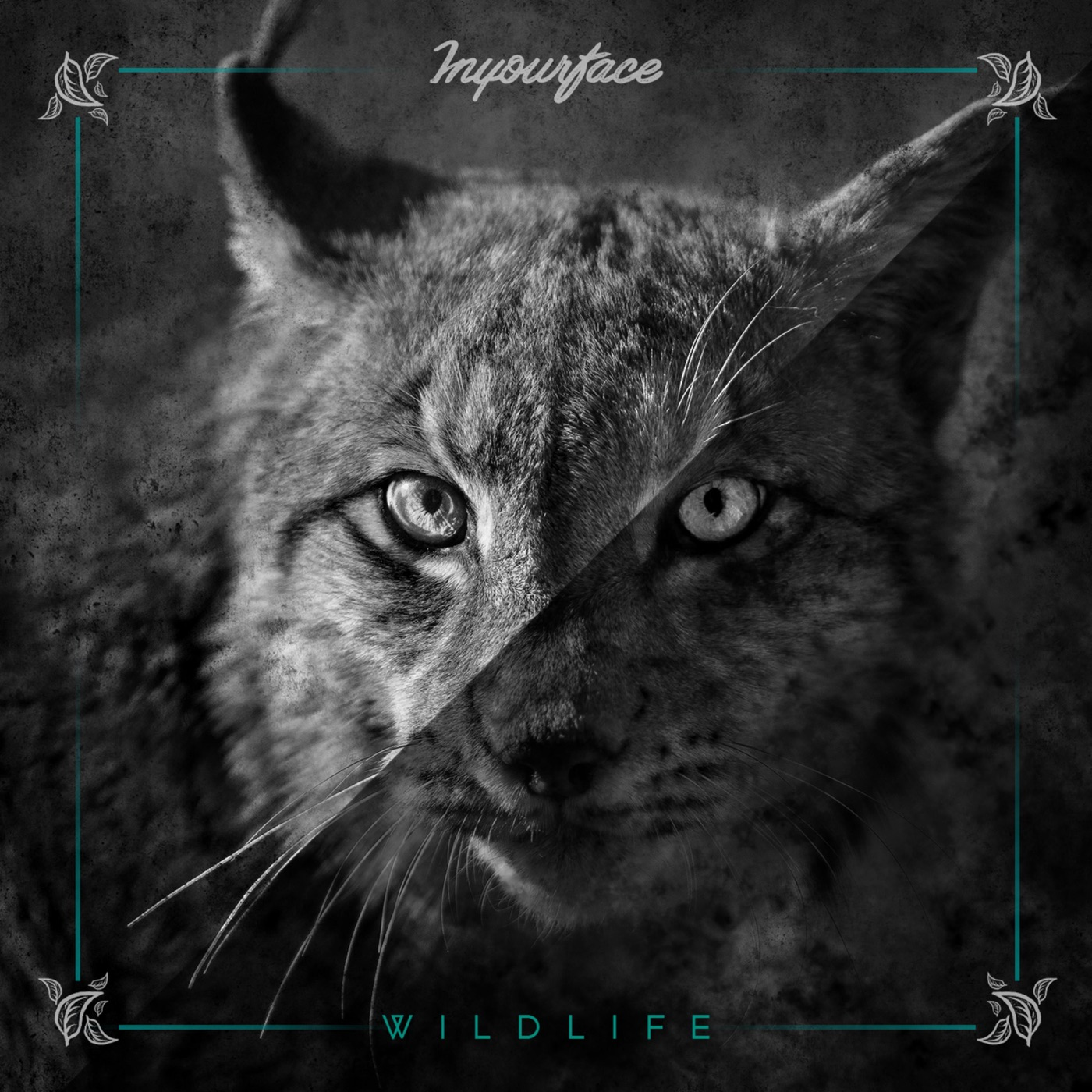 Inyourface – Wildlife (2018)