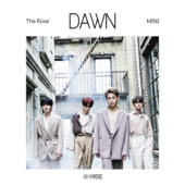 Dawn  EP-The Rose