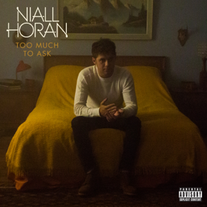 Niall Horan - Too Much to Ask