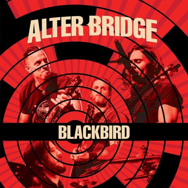Blackbird (Live) - Single