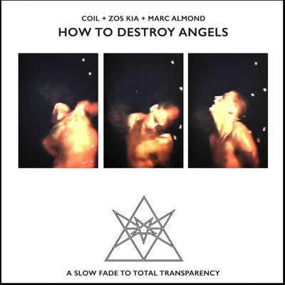 How to Destroy Angels - Marc Almond