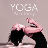 Yoga Academy: The Best Background for Yoga Classes