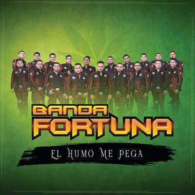 El Humo Me Pega - Single - Banda Fortuna