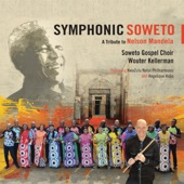 Nkosi Sikelel'iAfrika (feat. KwaZulu-Natal Philharmonic) artwork