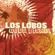 The Ugly Bug Ball - Los Lobos