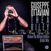 On the Way You Go (feat. Thea Riley) [Onair Mix]