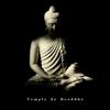 Bouddha musique sanctuaire, Ensemble de Musique Zen Relaxante & Oasis de sommeil - Temple de Bouddha: Sons de nature relaxants et musique de thérapie de guérison, Sommeil profond, Bien-être, Spa & massage, Écoute facile illustration