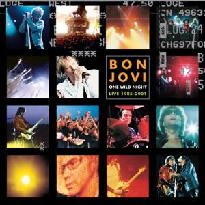 Bon Jovi - Something To Believe In