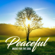 Instrumental Christian Songs & Christian Piano Music - Peaceful (Music For the Soul)