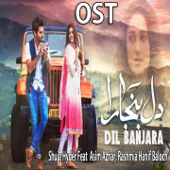 Dil Banjaara  (feat. Asim Azhar) [From