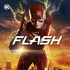 The Flash, Seasons 1-3 wiki, synopsis