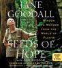 Jane Goodall - Seeds of Hope  artwork