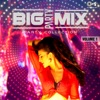 Big Party Mix: Party Collection, Vol. 1